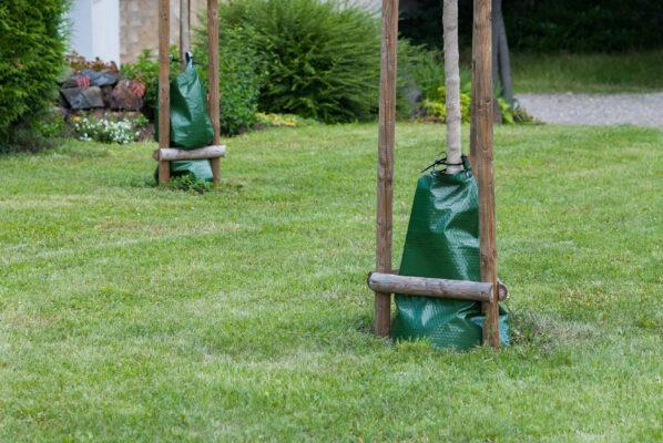 watering bags